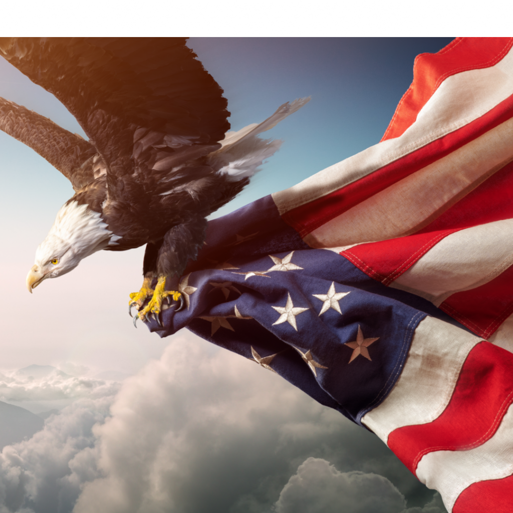 A bald eagle flies through the heavens clutching a large American flag.